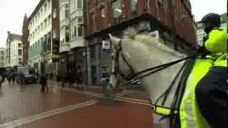 Garda Mounted Unit -- RTÉ Morning Edition