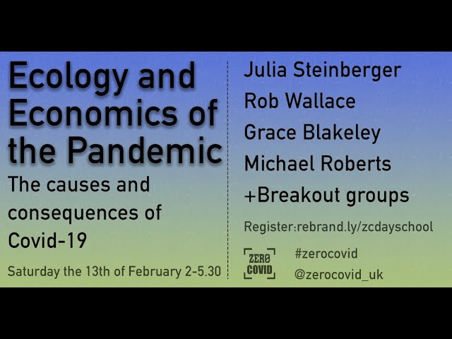 The Ecology of the Pandemic - morning session, 13 Feb 2021