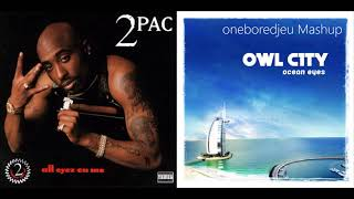 2Fly Owl City vs. 2Pac Mashup.mp3