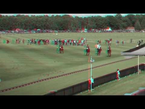 Queens cup final 3D