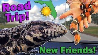 1,600-mile Florida Roadtrip Adventure! (New Animals?!)