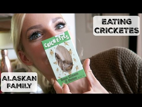 Low Carb and High Protein Snack | Eating Bugs | My Crazy ALASKAN Family