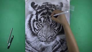 Download Drawing Deepika Padukone 4k Time Lapse MP3, MKV