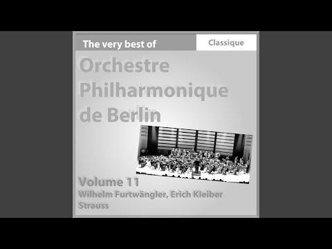 Sinfonia Domestica, Op. 53 : Scherzo. Munter