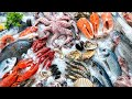 Mercury, Seafood and You: A Documentary Short