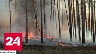 Смотреть видео Лесные пожары охватили десятки регионов России - Россия 24 онлайн