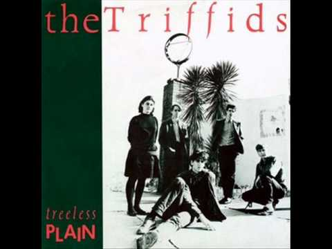 The Triffids - Hell of a Summer