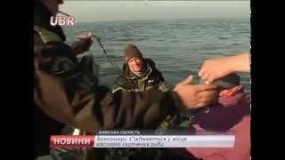 видео Заборона лову риби в зимувальних ямах! ⏰ Термін дії