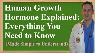 Human Growth Hormone Explained: Everything You Need to Know (Made Simple to Understand)