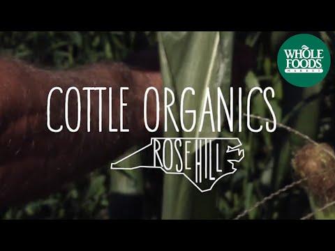 Cottle Organics | Values Matter | Whole Foods Market