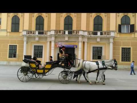 Schonbrunn Palace,  Vienna  2017