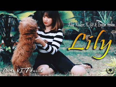 alan-walker---lily-(acoustic-cover)-by-kitakustik