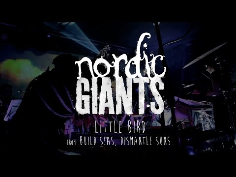 Nordic Giants Little Bird Live At The Old Market Brighton Youtube