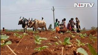 यूपी में अभी तक आठ लाख किसानों का कर्ज माफ नहीं