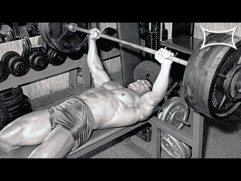 Bench Just like a Animal – 20 Day The Bench Press Program