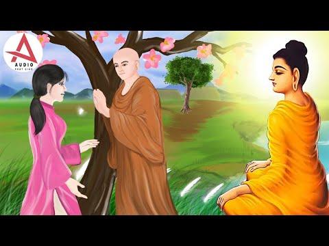 Kể Truyện Đêm Khuya - Câu Chuyện Tình Cảm Động Khóc Hết Nước Mắt -  Truyện Phật Giáo Giúp Ngủ Ngon