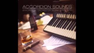 Accordion Sounds - 05 - Stevie Wonder Hit-Collection