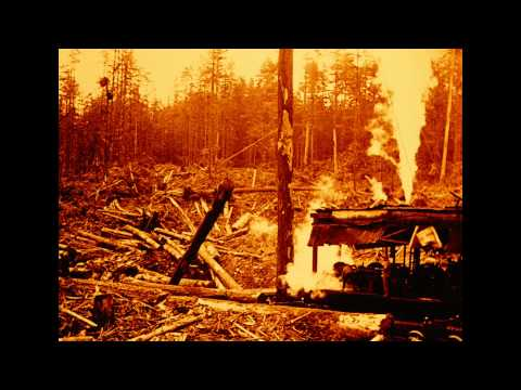 A Typical British Columbia Logging Operation : [incomplete] (1929)
