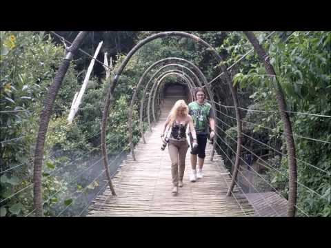 Birds of Eden - The world's largest single span aviary