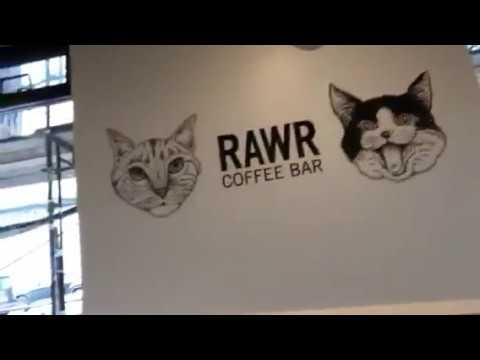 RAWR Coffee Bar Oakland At 29th And Broadway For A Great Mocha