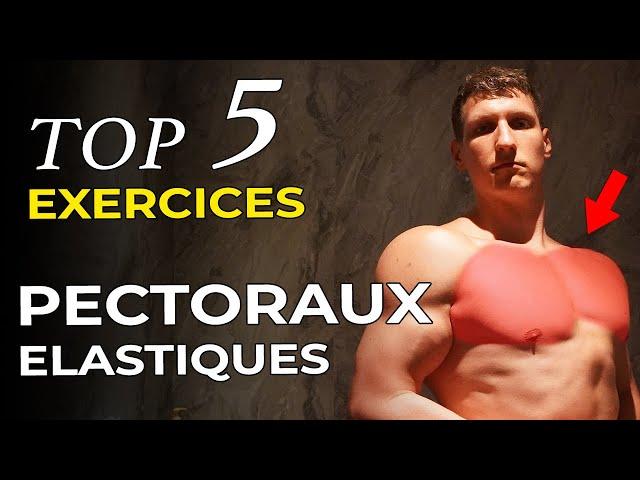 5 MEILLEURS EXERCICES PECTORAUX AUX ELASTIQUES (Fit-Superhumain)
