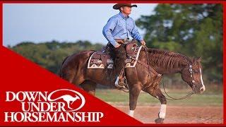 Clinton's 2YearOld Performance Horses