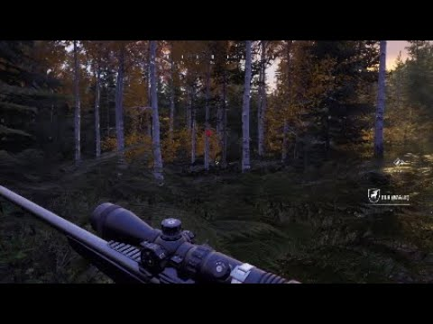 Hunting simulator 2 - hunting elk with my dog (part 2) |