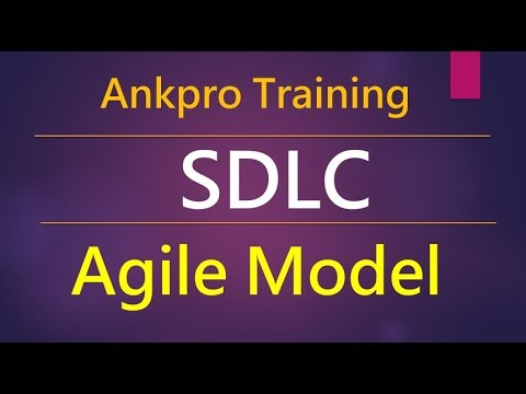Manual testing 7 - What is Agile model in software development life cycle and agile methodologies