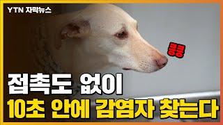 [자막뉴스] 코로나19 감염자?...