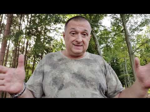 Nikolay Petichenko: Ліс-прокурори рекетири-Мустеца сірий кардинал беззаконня на Буковині