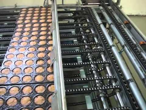 ลายการผลิตเค้ก แบบเต็มรูปแบบ CAKE PRODUCTION LINE