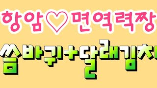#항암효과#씀바귀달래김치#면역력증진#노화방지#해열과건위…