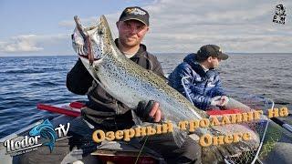 Predator Expedition Onega salmon 8,9 kg(Старая история в новом исполнении. Легкий троллинг на Онежском озере, с борта 4х метрового риба. Интересные..., 2015-02-25T21:47:30.000Z)