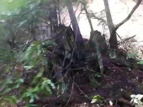 Summerhome Park Road Mudslide Forestville