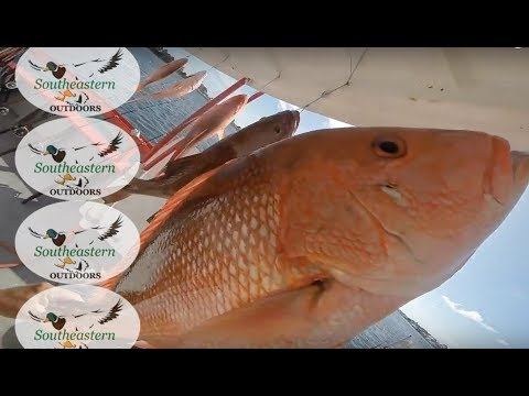Florida Fishing - Panama City Beach, FL Offshore Fishing - July 7, 2016