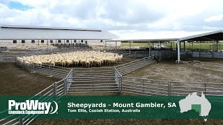 ProWay Sheepyards, Coola Station - Mt Gambier South Australia