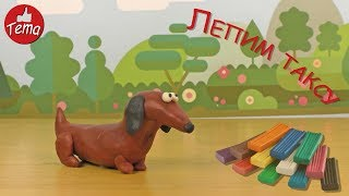 Как слепить собаку таксу из пластилина Лепим собаку sculpt from clay