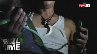 Reel Time: Aktwal na panghuhuli sa mga king cobra, silipin