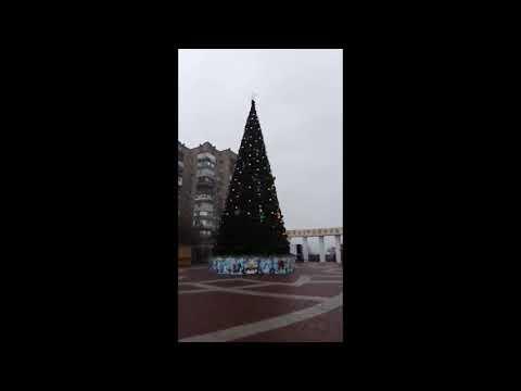 Местные Вести: В Мелитополе новогодняя елка горит джаже днем