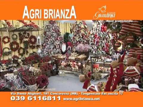agri brianza natale 2011 youtube