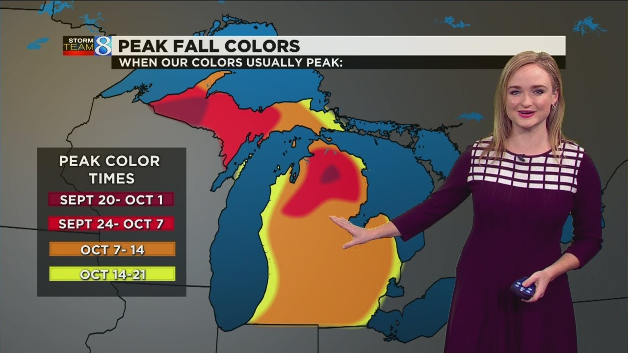 First day of fall: What Michigan's autumn forecast looks like