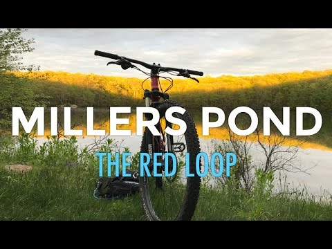 Red Loop at Millers Pond State Park in Durham, CT :: Mountain Biking Connecticut