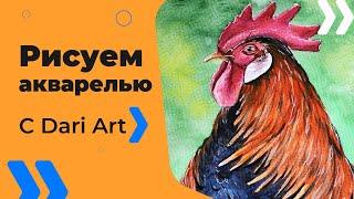Как нарисовать петуха акварелью! #Dari_Art(Свои идеи к видео урокам оставляйте в группе ВК https://vk.com/dari_art_artist Набор для рисования акварелью! Советы..., 2016-11-07T10:44:26.000Z)