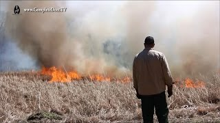 Video Prescribed Fire or Controlled Burn - Dangerously beneficial to your land. CD TV Ep. 10 download MP3, 3GP, MP4, WEBM, AVI, FLV Agustus 2017