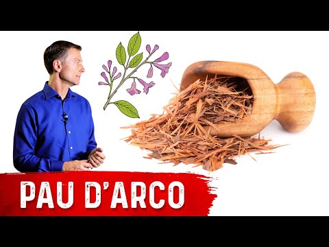The Benefits of Pau d'Arco