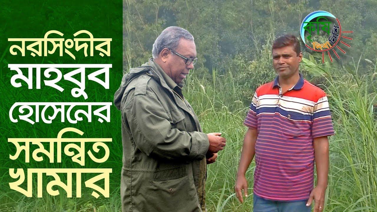 Download নরসিংদীর মাহবুব হোসেনের সমন্বিত কৃষি খামার   Shykh Seraj   Bangladesh Television  