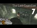 Friggin BOOP - The Last Guardian - Part 7 - SharkyBreath