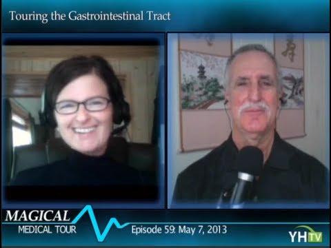Gastrointestinal GI Tract