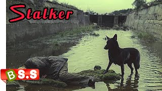 Stalker Movie Explained In Hindi / IMDB 8.2