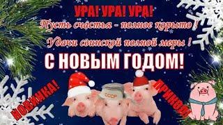 Новый год поздравляем прикольно зажигаем С Новым Годом 2019 свиньи
